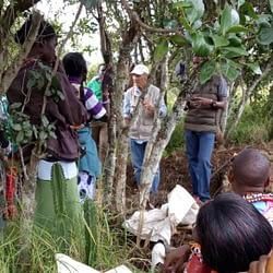 osugu_composting
