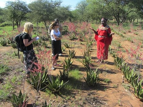 Twala_Aloe_Farm_in_2014-_Visit_of_LUSH_Foundation
